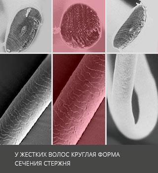 Лечение жестких волос - Восстановление и уход в клинике Geocosmed в Москве